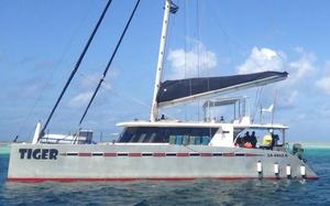 Used Anton Du Toit Aluminum Catamaran Sailboat For Sale