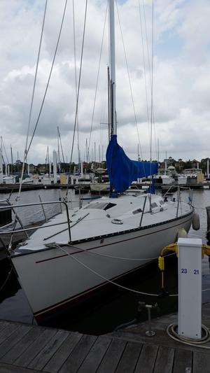 Used Schock 35 Racer and Cruiser Sailboat For Sale