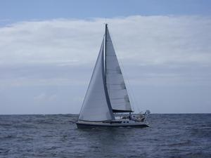 New Alubat OVNI 445 Cruiser Sailboat For Sale