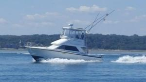 Used Phoenix Flybridge Boat For Sale