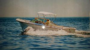 Used Lyman 24 Sportsman Express Cruiser Boat For Sale