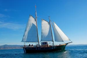 Used Davidson Gaff Rigged Schooner Cruiser Sailboat For Sale