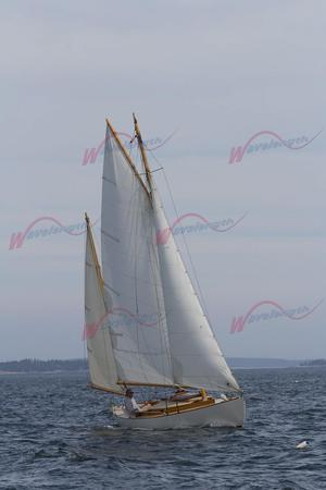 Used Gannon & Benjamin Tern Class Rozinante Daysailer Sailboat For Sale