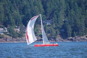 Used Schock 40 Racer and Cruiser Sailboat For Sale