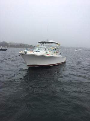 Used Black Watch 260 Express Cruiser Boat For Sale