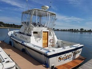 Used Albin 32 Sportfisher Twin Diesel Convertible Fishing Boat For Sale