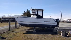 Used Pro Sports 2200 CC Prokat Power Catamaran Boat For Sale