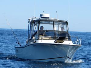 Used Carolina Classic Sportfish Cruiser - Tuna Chaser Convertible Fishing Boat For Sale