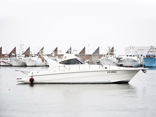 Used Cayman 43 WA Express Cruiser Boat For Sale