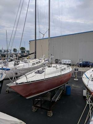 Used C & C 34 Cruiser Sailboat For Sale