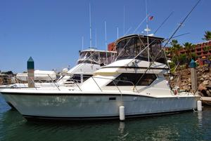Used Hatteras 38 Convertible Motor Yacht For Sale