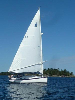 Used Nonsuch Cat Rig Daysailer Sailboat For Sale