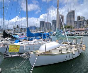 Used Cape George 31 Cruiser Sailboat For Sale