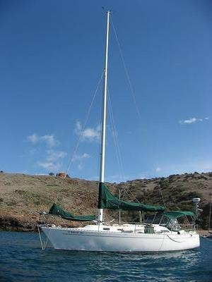 Used Freedom Daysailer Sailboat For Sale