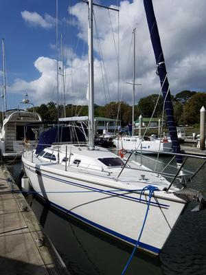 Used Catalina 320 Catamaran Sailboat For Sale