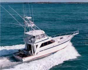 Used Striker Sportfish Sports Fishing Boat For Sale
