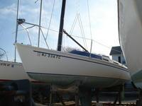 Used Freedom Marine F-21 Daysailer Sailboat For Sale