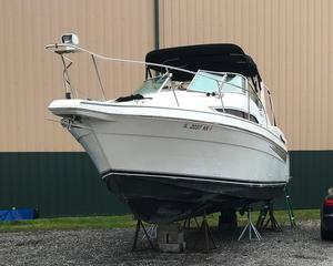 Used Carver 310 Express Cruiser Boat For Sale