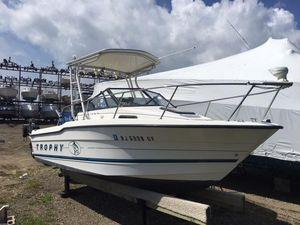 Used Bayliner 20 Trophy Cuddy Cabin Boat For Sale