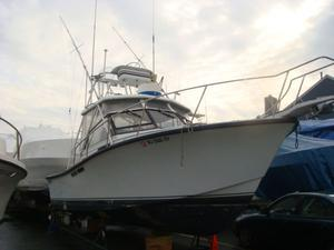 Used Rampage 28 Express Saltwater Fishing Boat For Sale