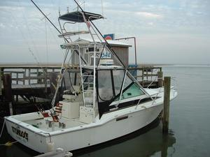 Used Phoenix 31 Special Edition Express Freshwater Fishing Boat For Sale