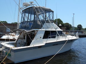 Used Silverton 34 CONV Convertible Fishing Boat For Sale