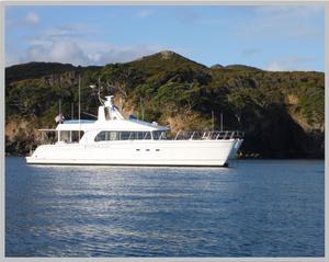 Used Malcolm Tennant Domino 20 Power Catamaran Boat For Sale
