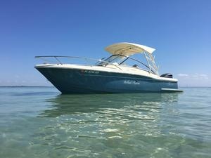 Used Scout 245 Dorado Freshwater Fishing Boat For Sale