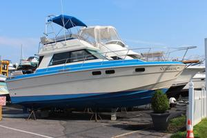 Used Wellcraft 310 Cruiser Boat For Sale