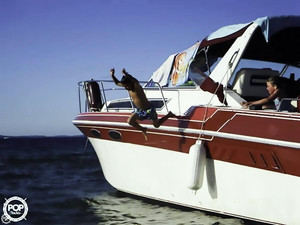 Used Wellcraft 3200 EX St Tropez Express Cruiser Boat For Sale