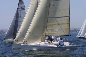 New Flying Tiger FT 7.5 Daysailer Sailboat For Sale