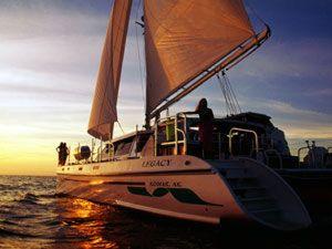 Used Woodwind Kurt Hughes Custom Catamaran Sailboat For Sale