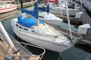 Used Catalina Daysailer Sailboat For Sale