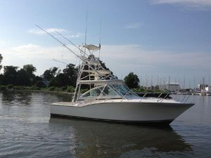 Used Carolina Classic 35 Express Cuddy Cabin Boat For Sale