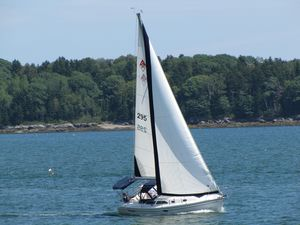 Used Catalina 310 Cruiser Sailboat For Sale
