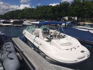 Used Campion 650 Chase Cruiser Boat For Sale