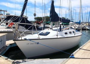 Used Precision 23 Daysailer Sailboat For Sale