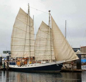 Used Colvin Pipestrelle Schooner Sailboat For Sale