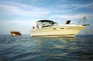 Used Sea Ray 300 Weekender Motor Yacht For Sale