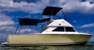 Used Bertram 28 Flybridge Convertible Fishing Boat For Sale