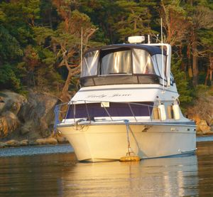 Used Tollycraft 30' Sport Cruiser Sports Cruiser Boat For Sale