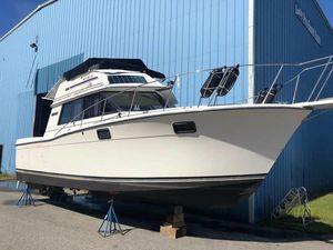 Used Carver 32' convertible32' convertible Walkaround Fishing Boat For Sale