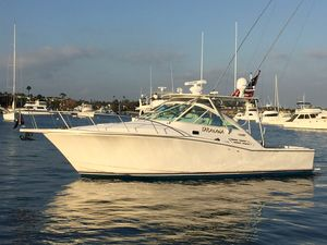 Used Cabo 31 Express Cruiser Boat For Sale