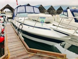 Used Sun Runner 316sb Cuddy Cabin Boat For Sale