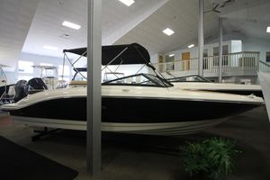 New Sea Ray SPX 210 Outboard Other Boat For Sale