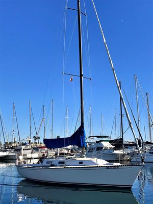 Used Thomas Marine T35 BY Tartan Yachts Racer and Cruiser Sailboat For Sale