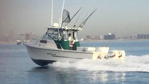 Used Sea Ox 25 Blue Water Pro Cuddy Cabin Boat For Sale