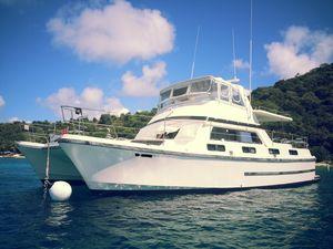 Used C&c Logical 46 Power Catamaran Boat For Sale