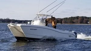 Used World Cat 246 SF Power Catamaran Boat For Sale