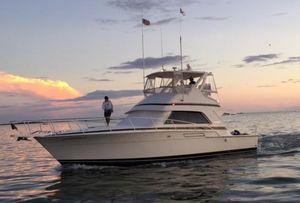 Used Bertram 43 Convertible Fishing Boat For Sale